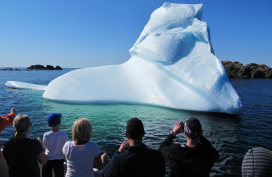 Iceberg viewing, Newfoundland and Labrador