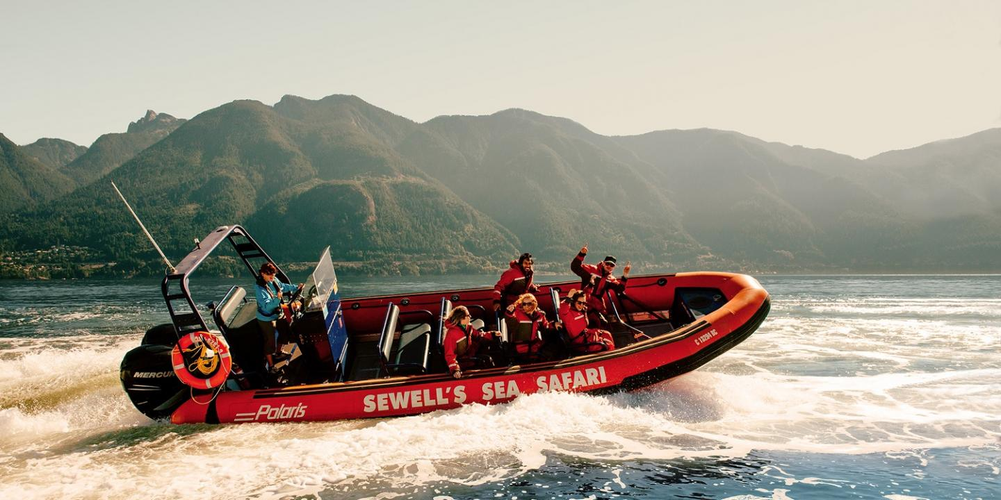 Whale Watching, British Columbia